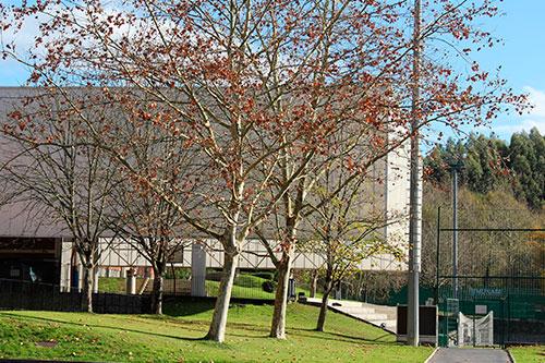 Colegio Munabe, colegio concertado en Loiu.