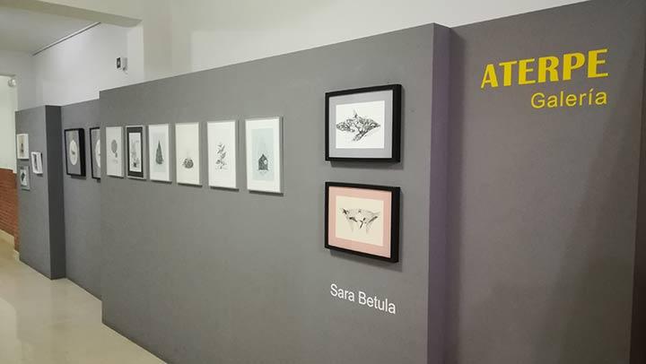 Nueva exposición en ATERPE: Sara Betula