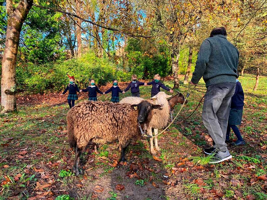 La granja se acerca al colegio
